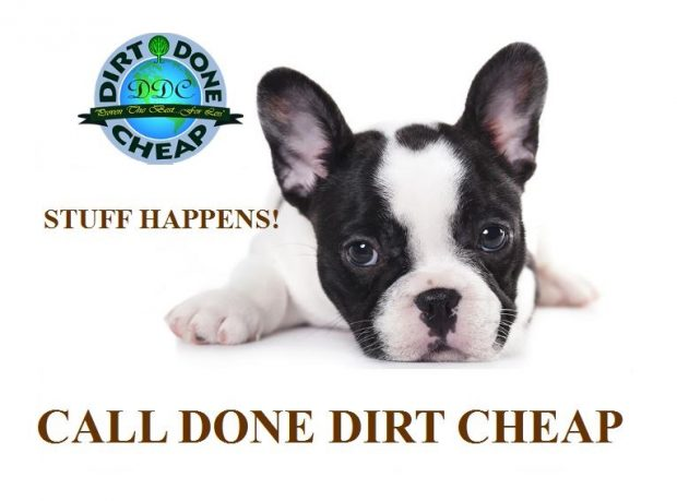 CARPET CLEANING GILBERT AZ