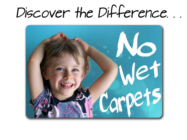 carpet cleaning bay city mi
