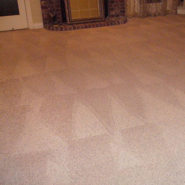 Carpet Cleaning Gilbert Az Gilbert Arizona Dry Organic